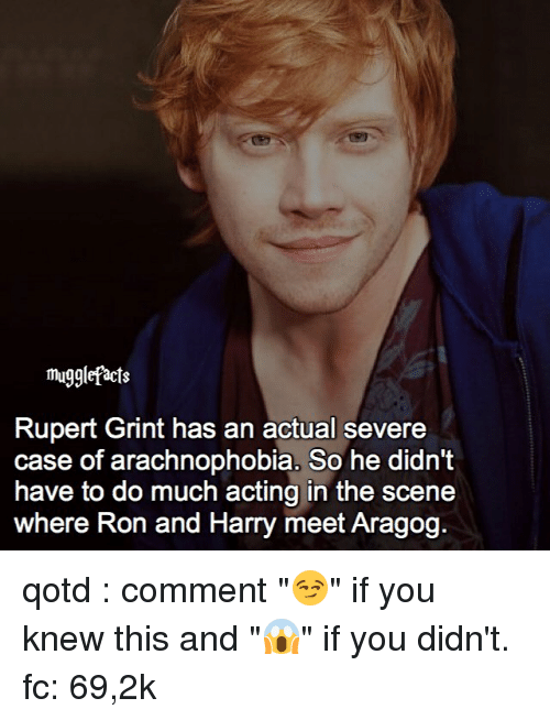 """arachnophobia: mugglefacts  Rupert Grint has an actual severe  case of arachnophobia. So he didn't  have to do much acting in the scene  where Ron and Harry meet Aragog. qotd : comment """"😏"""" if you knew this and """"😱"""" if you didn't. fc: 69,2k"""