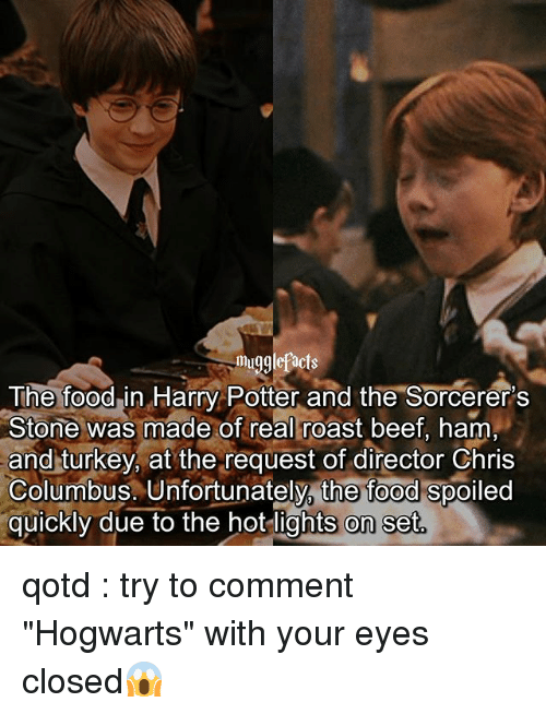 "Roastes: mugglefacts  The foodin Harry Potter and the Sorcerer's  Stone was made of real roast beef, ham  and turkey, at the request of director Chris  Columbus. Unfortunately, the food spoiled  quickly due to the hot lights on set qotd : try to comment ""Hogwarts"" with your eyes closed😱"