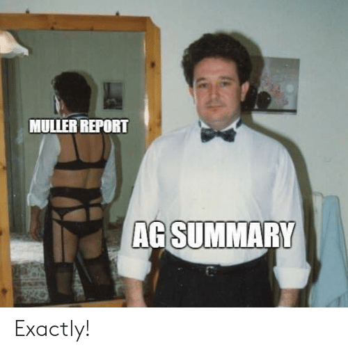 Memes, 🤖, and Exactly: MULIER REPORT  AG SUMMARY Exactly!