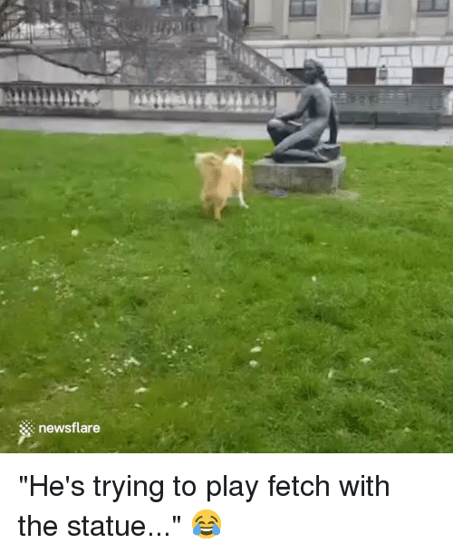 "Play, Fetch, and Hes: mum  newsflare ""He's trying to play fetch with the statue..."" 😂"