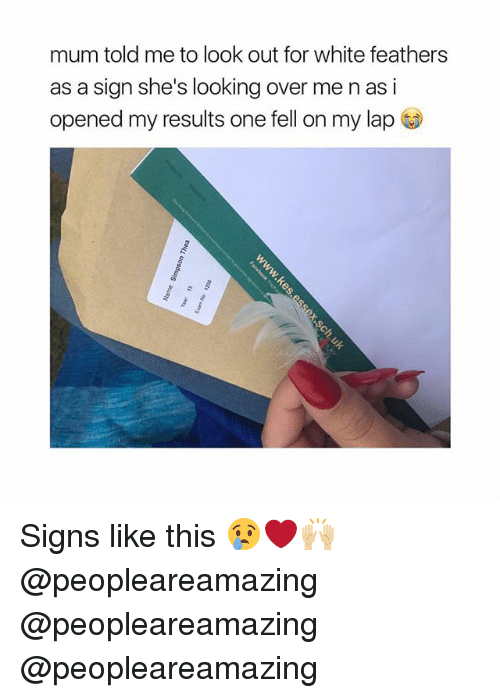 Memes, White, and 🤖: mum told me to look out for white feathers  as a sign she's looking over me n as i  opened my results one fell on my lap Signs like this 😢❤️🙌🏼 @peopleareamazing @peopleareamazing @peopleareamazing