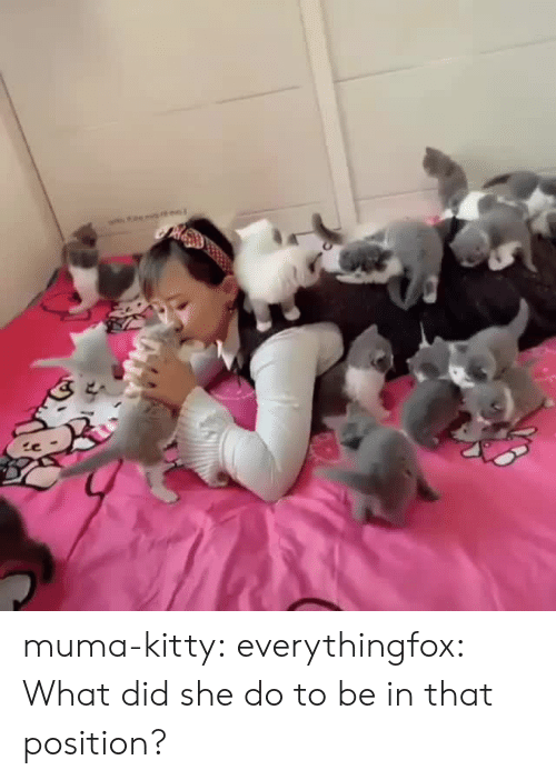 Tumblr, Blog, and Media: muma-kitty:  everythingfox:  What did she do to be in that position?