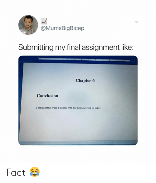 thesis: @MumsBigBicep  Submitting my final assignment like:  Chapter 6  Conclusion  I conclude that when I'm done with my thesis, life will be better. Fact 😂