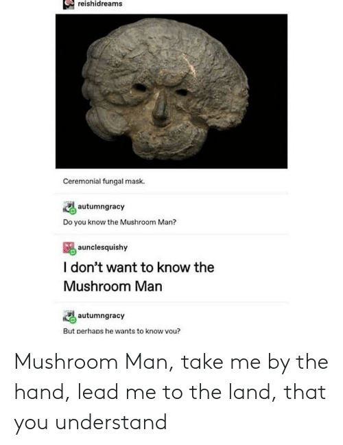 understand: Mushroom Man, take me by the hand, lead me to the land, that you understand