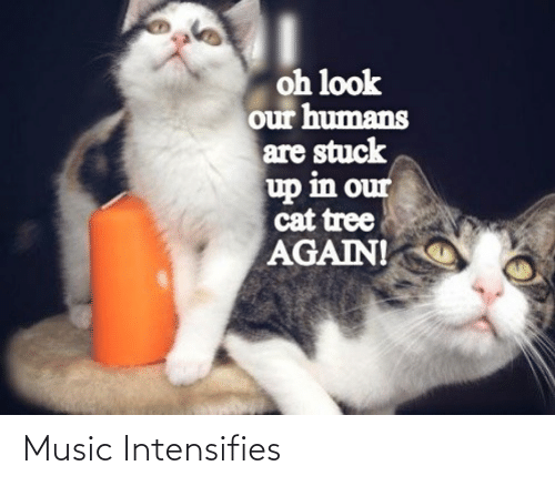 Intensifies: Music Intensifies