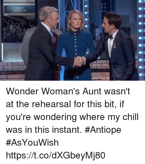 Chill, Memes, and Wonder: MUSICAL  RTI Wonder Woman's Aunt wasn't at the rehearsal for this bit, if you're wondering where my chill was in this instant. #Antiope #AsYouWish https://t.co/dXGbeyMj80