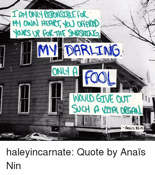 afs: MV DARLING  ONS A  FOOL  WOULD GIVE OUT haleyincarnate:  Quote by  Anaïs Nin