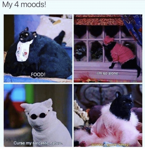 Food, Nature, and Sarcastic: My 4 moods!  FOOD!  im soalone  Curse my sarcastic nature