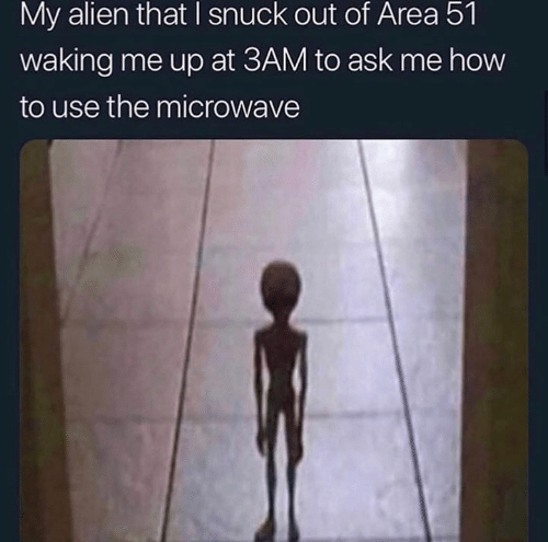 How To Use: My alien that I snuck out of Area 51  waking me up at 3AM to ask me how  to use the microwave