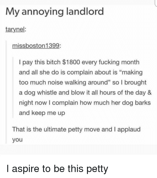 """whistle: My annoying landlord  tarynel:  missboston1399:  I pay this bitch $1800 every fucking month  and all she do is complain about is """"making  too much noise walking around"""" so l brought  a dog whistle and blow it all hours of the day 8&  night now I complain how much her dog barks  and keep me up  2  That is the ultimate petty move and I applaud  you I aspire to be this petty"""