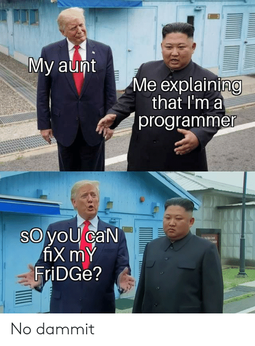 Dammit: My aunt  Me explaining  that I'm a  programmer  oyoU caN  fiX mY  FriDGe? No dammit