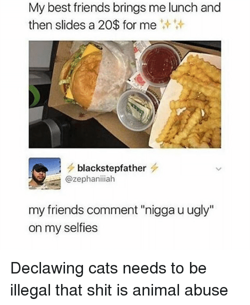 """Animal Abuse: My best friends brings me lunch and  then slides a 20$ for me  blackstepfather s.  @zephaniiah  my friends comment """"nigga u ugly""""  on my selfies Declawing cats needs to be illegal that shit is animal abuse"""