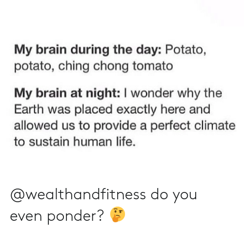 Human Life: My brain during the day: Potato,  potato, ching chong tomato  My brain at night: I wonder why the  Earth was placed exactly here and  allowed us to provide a perfect climate  to sustain human life. @wealthandfitness do you even ponder? 🤔