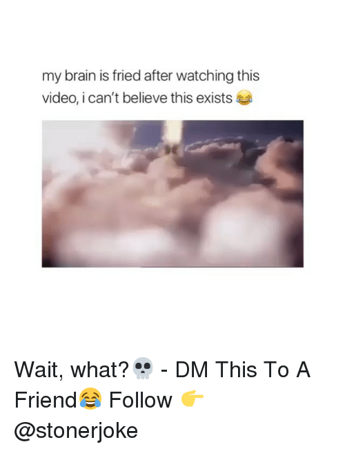 Memes, Brain, and Video: my brain is fried after watching this  video, i can't believe this exists Wait, what?💀 - DM This To A Friend😂 Follow 👉 @stonerjoke