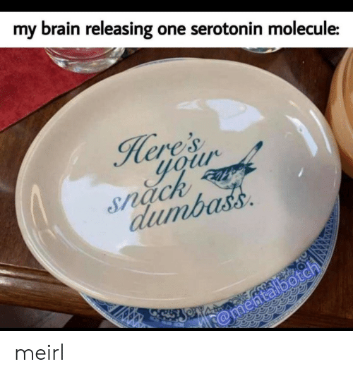 eres: my  brain releasing one serotonin molecule:  ere's  your  Snack  dumbass  @mentalbotch meirl