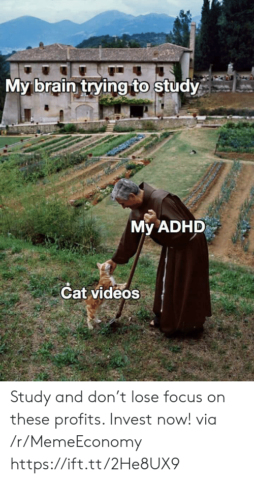 Videos, Adhd, and Brain: My brain trying to study  My ADHD  Cat videos Study and don't lose focus on these profits. Invest now! via /r/MemeEconomy https://ift.tt/2He8UX9