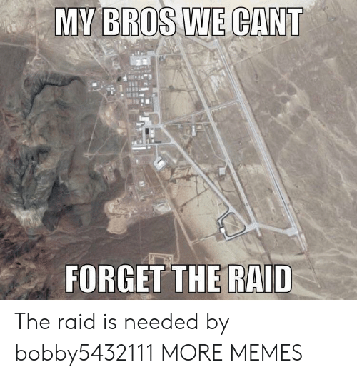 Dank, Memes, and Target: MY BROS WE CANT  FORGET THE RAID The raid is needed by bobby5432111 MORE MEMES