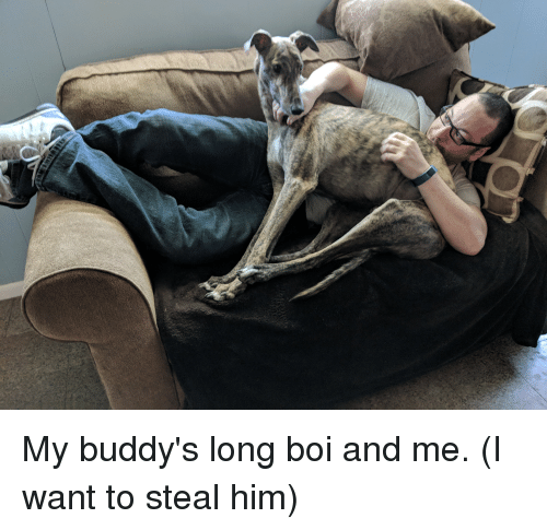 buddys: My buddy's long boi and me. (I want to steal him)