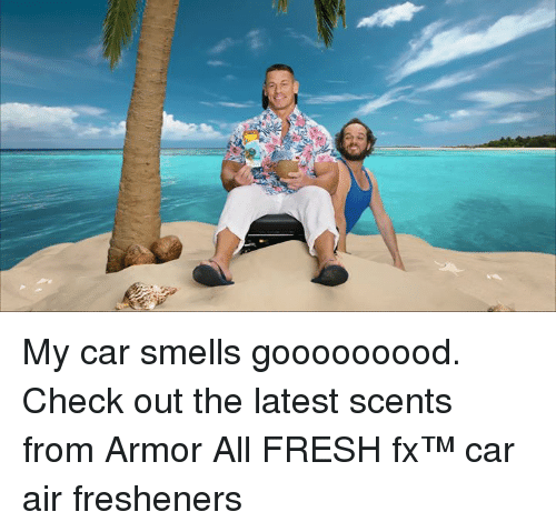 Fresh, Car, and Air: My car smells gooooooood. Check out the latest scents from Armor All FRESH fx™ car air fresheners