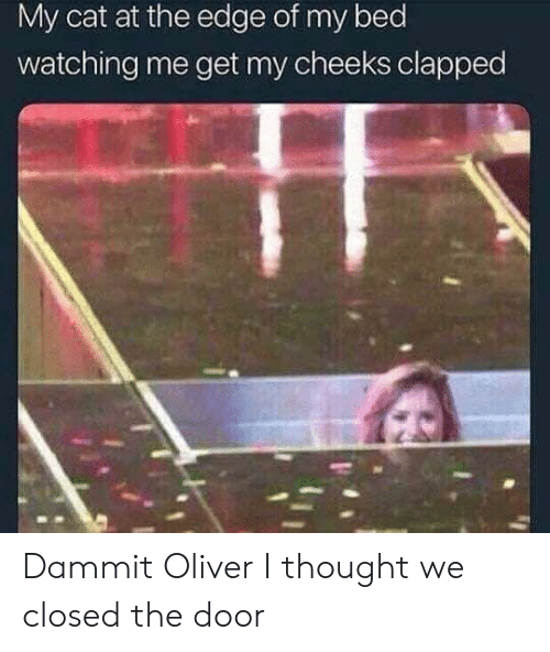 Clapped: My cat at the edge of my bed  watching me get my cheeks clapped Dammit Oliver I thought we closed the door