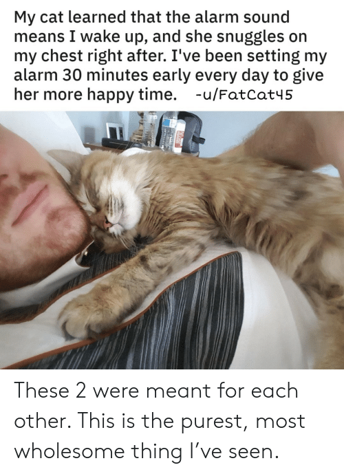 give her: My cat learned that the alarm sound  means I wake up, and she snuggles on  my chest right after. I've been setting my  alarm 30 minutes early every day to give  her more happy time. -u/FatCat45 These 2 were meant for each other. This is the purest, most wholesome thing I've seen.