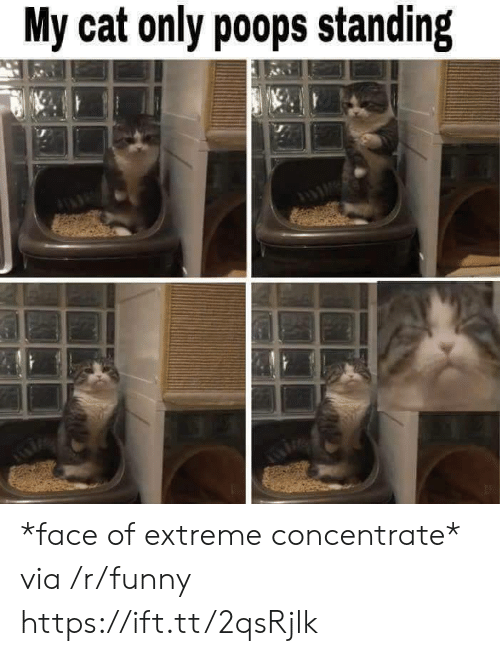 concentrate: My cat only poops standing *face of extreme concentrate* via /r/funny https://ift.tt/2qsRjlk
