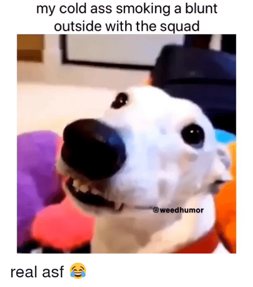 Ass, Smoking, and Squad: my cold ass smoking a blunt  outside with the squad  @weedhumor real asf 😂
