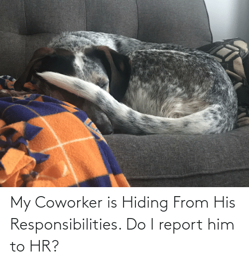 responsibilities: My Coworker is Hiding From His Responsibilities. Do I report him to HR?