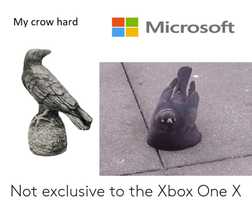 xbox one: My crow hard  Microsoft Not exclusive to the Xbox One X