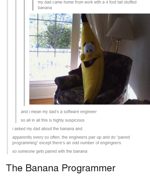"""software engineer: my dad came home from work with a 4 foot tall stuffed  banana  and i mean my dad's a software engineer  so all in all this is highly suspicious  i asked my dad about the banana and  apparently every so often, the engineers pair up and do """"paired  programming"""" except there's an odd number of engingeers  so someone gets paired with the banana The Banana Programmer"""