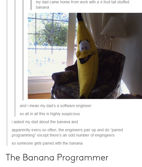 "apparently: my dad came home from work with a 4 foot tall stuffed  banana  and i mean my dad's a software engineer  so all in all this is highly suspicious  i asked my dad about the banana and  apparently every so often, the engineers pair up and do ""paired  programming"" except there's an odd number of engingeers  sO someone gets paired with the banana The Banana Programmer"