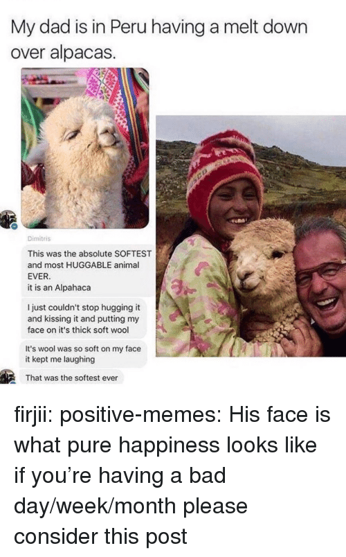 Bad, Bad Day, and Dad: My dad is in Peru having a melt down  over alpacas  Dimitris  This was the absolute SOFTEST  and most HUGGABLE animal  EVER  it is an Alpahaca  l just couldn't stop hugging it  and kissing it and putting my  face on it's thick soft wool  It's wool was so soft on my face  it kept me laughing  That was the softest ever firjii: positive-memes: His face is what pure happiness looks like if you're having a bad day/week/month please consider this post