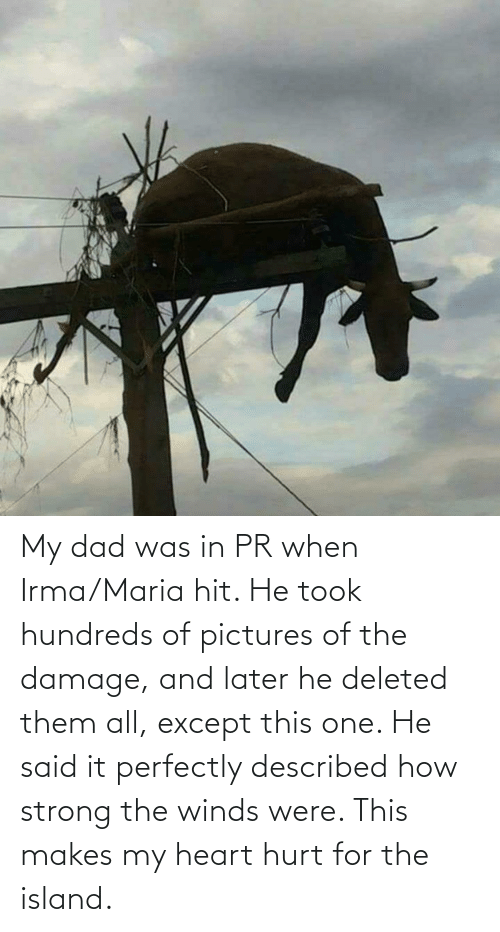 Dad: My dad was in PR when Irma/Maria hit. He took hundreds of pictures of the damage, and later he deleted them all, except this one. He said it perfectly described how strong the winds were. This makes my heart hurt for the island.