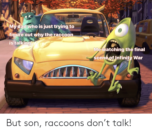 Final Scene: My dad who is just trying to  figure out why the raccoon  is talking  Mewatching the final  scene of Infinity War But son, raccoons don't talk!
