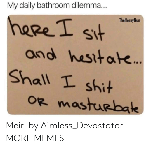 Dank, Memes, and Shit: My daily bathroom dilemma  TheHornyNun  heeeI s  and hesitak  Shall t shit Meirl by Aimless_Devastator MORE MEMES