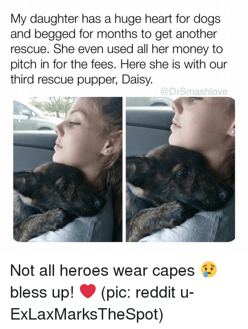 Bless Up, Dogs, and Memes: My daughter has a huge heart for dogs  and begged for months to get another  rescue. She even used all her money to  pitch in for the fees. Here she is with our  third rescue pupper, Daisy.  @DrSmashlove Not all heroes wear capes 😢 bless up! ❤️ (pic: reddit u-ExLaxMarksTheSpot)