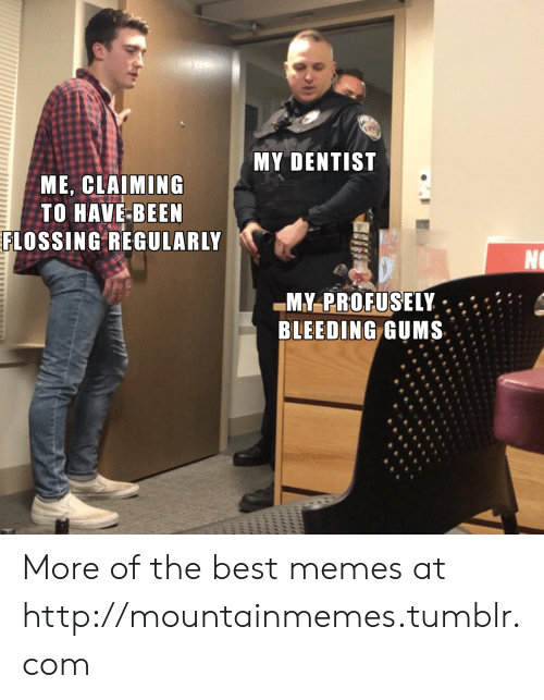 best memes: MY DENTIST  ME, CLAIMING  TO HAVE-BEEN  FLOSSING REGULARLY  NO  MY-PROFUSELY  BLEEDING GUMS  uliiil More of the best memes at http://mountainmemes.tumblr.com
