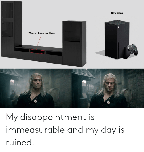 disappointment: My disappointment is immeasurable and my day is ruined.