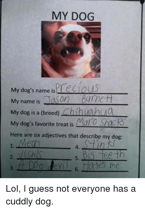 maro: MY DOG  My dog's name is  My name is  Ja on  Barrett  My dog is a (breed)  Chin  My dog's favorite treat is Maro  Sh  Here are six adjectives that describe my dog  Big teeth  6. Lol, I guess not everyone has a cuddly dog.