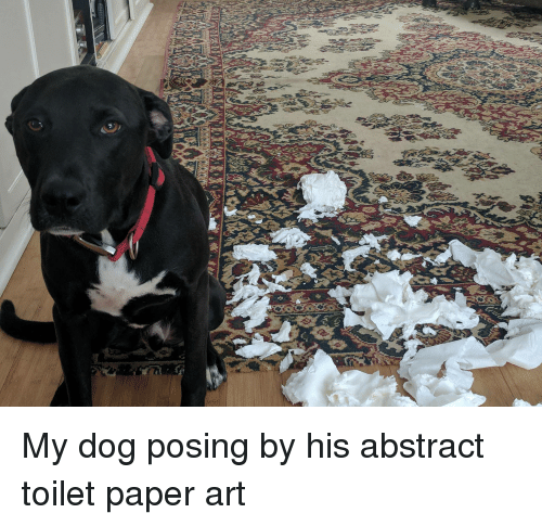 paper art: My dog posing by his abstract toilet paper art