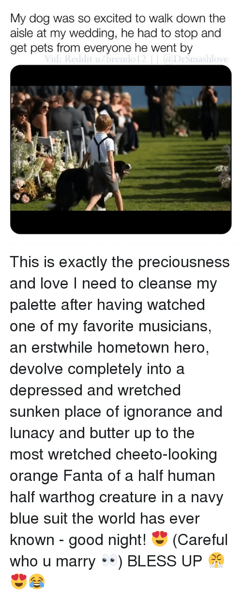 palette: My dog was so excited to walk down the  aisle at my wedding, he had to stop and  get pets from everyone he went by  Vid: Reddit u/brendo12(DrSmashlove This is exactly the preciousness and love I need to cleanse my palette after having watched one of my favorite musicians, an erstwhile hometown hero, devolve completely into a depressed and wretched sunken place of ignorance and lunacy and butter up to the most wretched cheeto-looking orange Fanta of a half human half warthog creature in a navy blue suit the world has ever known - good night! 😍 (Careful who u marry 👀) BLESS UP 😤😍😂
