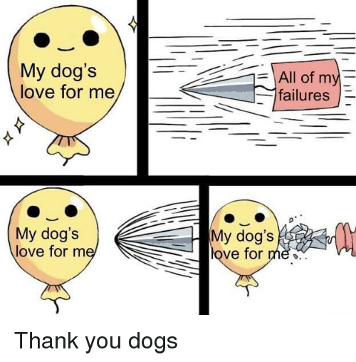 Dogs, Love, and Thank You: My dog's  love for me  All of my  failures  My dog's  My dog's  love for nm  ve for me» Thank you dogs