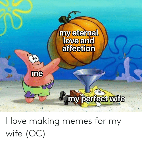 Eternal: my eternal  love and  affection  me  my perfect wife I love making memes for my wife (OC)