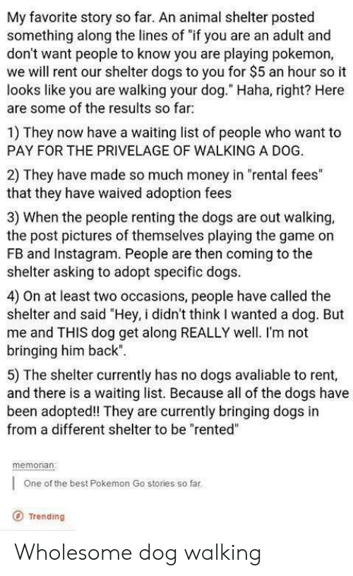 "Dogs, Instagram, and Money: My favorite story so far. An animal shelter posted  something along the lines of ""if you are an adult and  don't want people to know you are playing pokemon,  we will rent our shelter dogs to you for $5 an hour so it  looks like you are walking your dog."" Haha, right? Here  are some of the results so far  1) They now have a waiting list of people who want to  PAY FOR THE PRIVELAGE OF WALKING A DOG.  2) They have made so much money in ""rental fees""  that they have waived adoption fees  3) When the people renting the dogs are out walking,  the post pictures of themselves playing the game on  FB and Instagram. People are then coming to the  shelter asking to adopt specific dogs  4) On at least two occasions, people have called the  shelter and said ""Hey, i didn't think I wanted a dog. But  me and THIS dog get along REALLY well. I'm not  bringing him back""  5) The shelter currently has no dogs avaliable to rent,  and there is a waiting list. Because all of the dogs have  been adopted! They are currently bringing dogs in  from a different shelter to be ""rented""  memonan  One of the best Pokemon Go stories so far  O Trending Wholesome dog walking"
