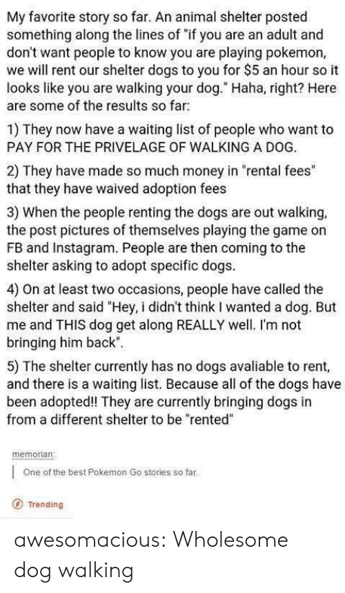 "get along: My favorite story so far. An animal shelter posted  something along the lines of ""if you are an adult and  don't want people to know you are playing pokemon,  we will rent our shelter dogs to you for $5 an hour so it  looks like you are walking your dog."" Haha, right? Here  are some of the results so far  1) They now have a waiting list of people who want to  PAY FOR THE PRIVELAGE OF WALKING A DOG.  2) They have made so much money in ""rental fees""  that they have waived adoption fees  3) When the people renting the dogs are out walking,  the post pictures of themselves playing the game on  FB and Instagram. People are then coming to the  shelter asking to adopt specific dogs  4) On at least two occasions, people have called the  shelter and said ""Hey, i didn't think I wanted a dog. But  me and THIS dog get along REALLY well. I'm not  bringing him back""  5) The shelter currently has no dogs avaliable to rent,  and there is a waiting list. Because all of the dogs have  been adopted! They are currently bringing dogs in  from a different shelter to be ""rented""  memonan  One of the best Pokemon Go stories so far  O Trending awesomacious:  Wholesome dog walking"