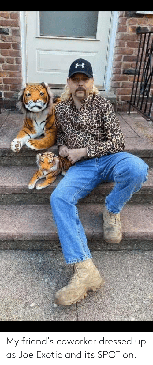 joe: My friend's coworker dressed up as Joe Exotic and its SPOT on.