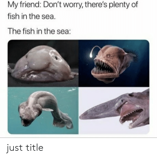 Fish, Plenty of Fish, and Friend: My friend: Don't worry, there's plenty of  fish in the sea  The fish in the sea: just title