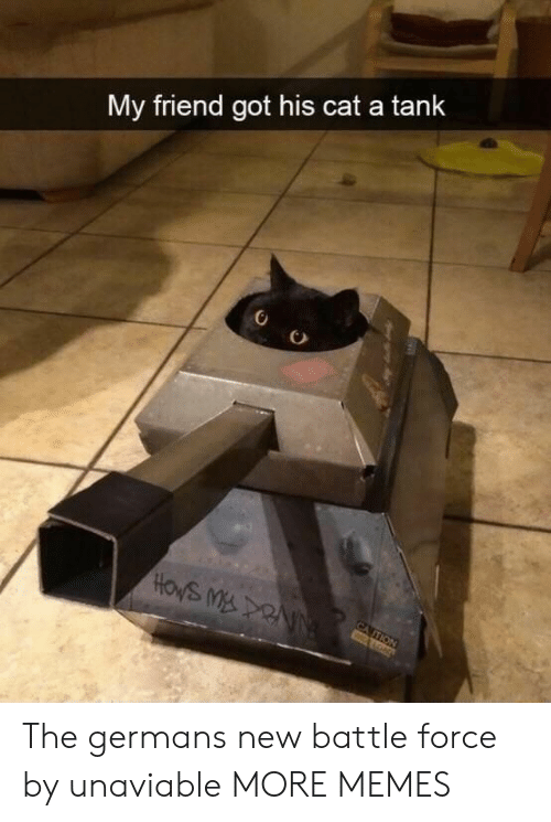 germans: My friend got his cat a tank  CA TION  wALOND The germans new battle force by unaviable MORE MEMES