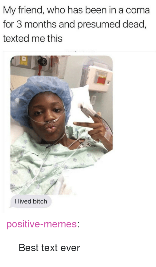 """I Lived Bitch: My friend, who has been in a coma  for 3 months and presumed dead,  texted me this  I lived bitch <p><a href=""""https://positive-memes.tumblr.com/post/166395954630/best-text-ever"""" class=""""tumblr_blog"""">positive-memes</a>:</p>  <blockquote><p>Best text ever</p></blockquote>"""