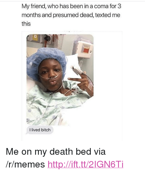"""I Lived Bitch: My friend, who has been in a coma for 3  months and presumed dead, texted me  this  I lived bitch <p>Me on my death bed via /r/memes <a href=""""http://ift.tt/2IGN6Ti"""">http://ift.tt/2IGN6Ti</a></p>"""